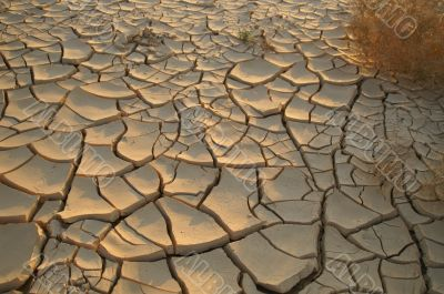 Dry soil - ecology disaster