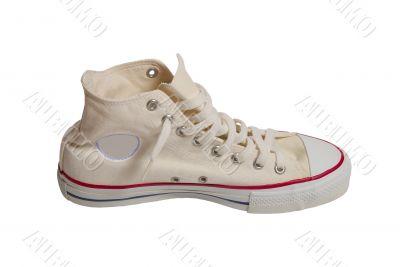 Sport shoe isolated on white background
