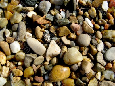 loose stones and gravel texture