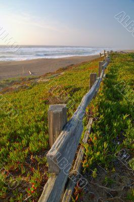 Point Reyes Seashore
