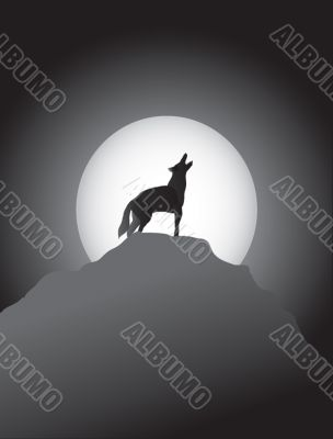Coyote Howling at the Moon
