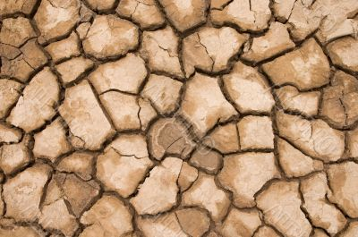cracked and dried soil