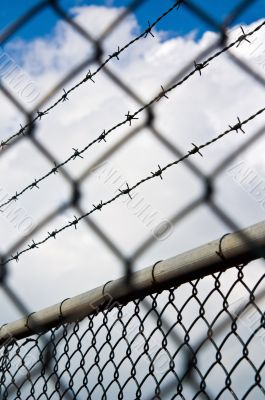 barbed wire behind a chain link fence