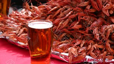 Mug of beer and crayfishes