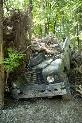 carcrash in the bush