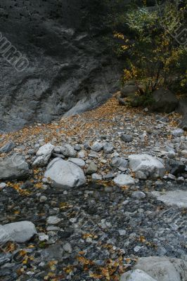 Dark shadows, stream bed