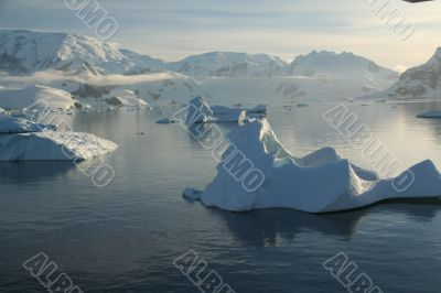 Icebergs,  mirrored in ocean