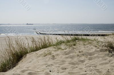 a dune at the beach