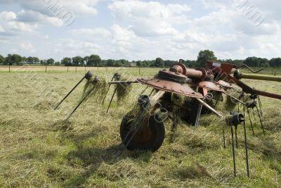 turn around hay