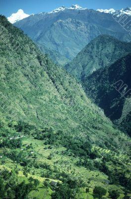 Steep, terraced valley