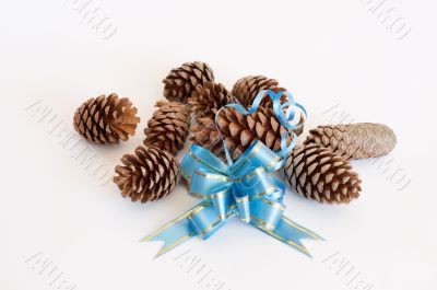 Ribbon and pine cones