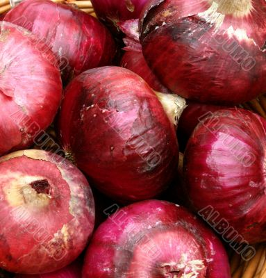 Fresh Red Organic Onions at Market