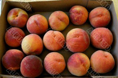 Organic Summer Peaches