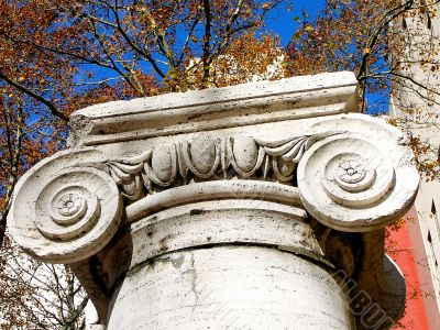 Detail of Ionic Capital and Column