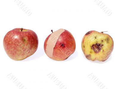 apple - good bad ugly
