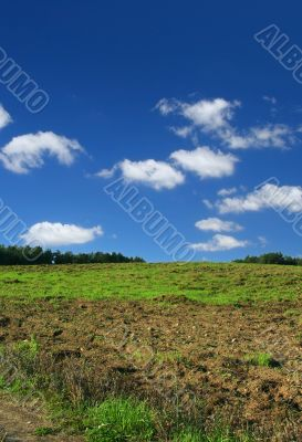 ploughed  pasture