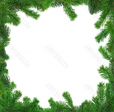 xxl image of square spruce twig frame