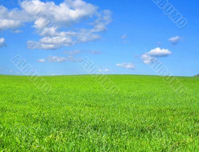 idyllic scenery