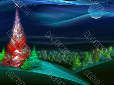 Christmas fur-tree in the night forest 2008