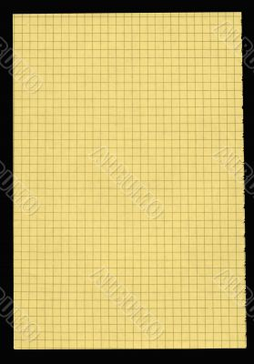 XXL size piece of yellow squared paper