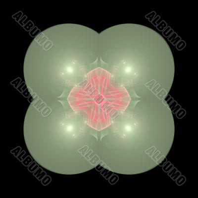 Transparent fractal mandala