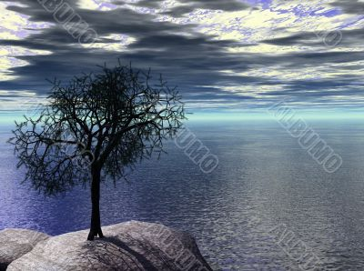 3d sentinel pine on shore cliff