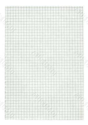 XXL size squared paper page