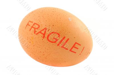 fragile free-range egg