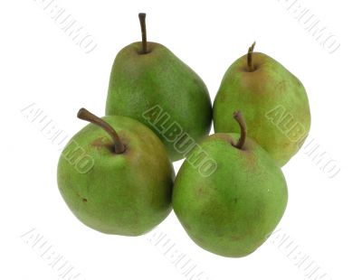 green pears on white #2