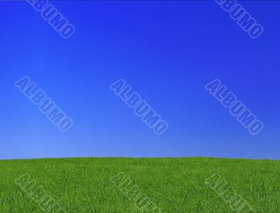 peaceful grassland scenic