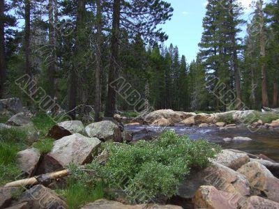 Torrent flow in Yosemite Park
