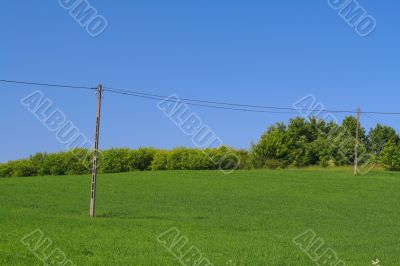 telephone poles on a hilltop
