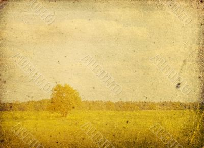 bleached image of a tree on a vintage paper