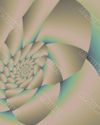 Smooth pastel nautilus shell