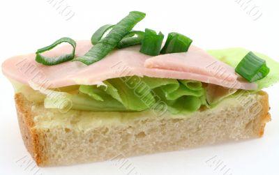 macro of tasty ham sandwich