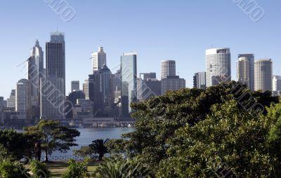 Sydney Urban Oasis