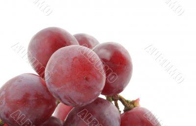 bunch of grapes real macro