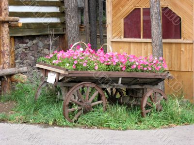 Old rural waggon