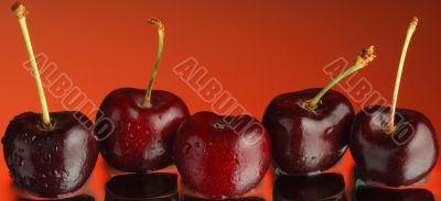 Sweet cherry 3
