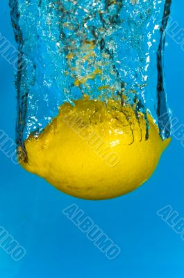 Lemon Fruit - Citrus Water Splash