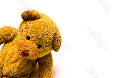 Playful Toy Teddy Bear