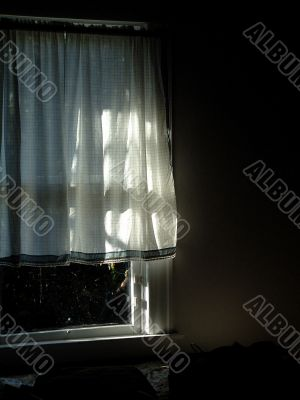 Sunlight Shining Through Curtain In Cozy Home