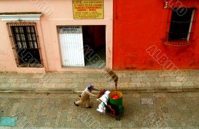 Street Sweeper, Oaxaca, Mexico