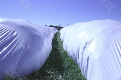 long round bale rows
