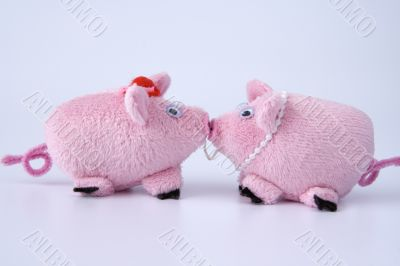 Though you and a pig, but I love you
