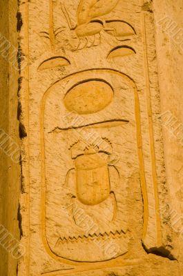Egyptian Pyramid Scarab Beetle