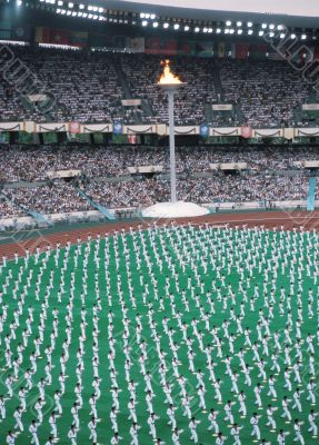 Stadium Performance