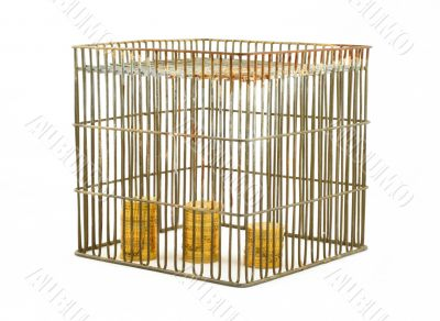 banking - coins in cage on white #2