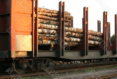 Wagon with the wood