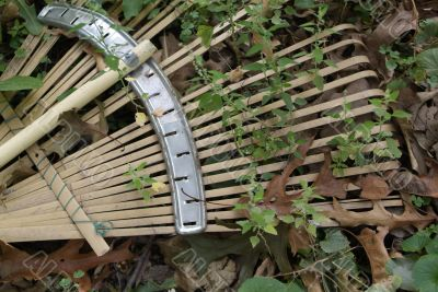 rake with overgrown weeds